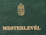 Schweisser mit Meisterbrief